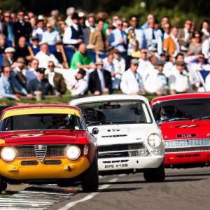 Goodwood Revival 2015: Stippler leading the race